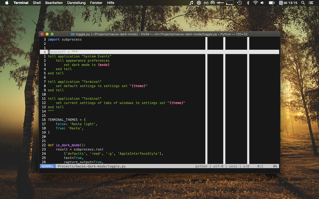 MacOS dark mode with a dark Terminal profile and a light Vim theme.